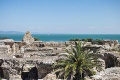 Caratagina in Tunisia. Ruins of Cartagina - monument in Tunisia. Thermes of Antonin stock photos
