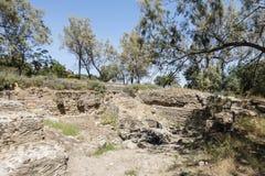 Caratagina in Tunisia. Ruins of Cartagina - monument in Tunisia. Thermes of Antonin stock photography