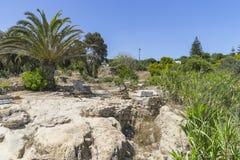 Caratagina w Tunezja Obraz Stock