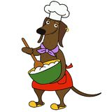 Carattere del cuoco unico del cane del bassotto tedesco del fumetto immagine stock libera da diritti