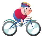 Carattere del maiale che guida una bicicletta con il casco della bici illustrazione vettoriale