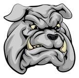 Carattere della mascotte del bulldog Fotografia Stock Libera da Diritti