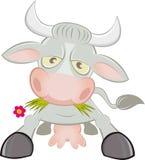 Carattere della mucca del fumetto Fotografia Stock