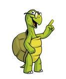 Carattere della tartaruga del fumetto Fotografia Stock