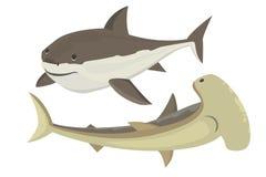 Carattere dello squalo di vettore Fotografia Stock