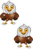 Carattere di Eagle calvo Fotografie Stock