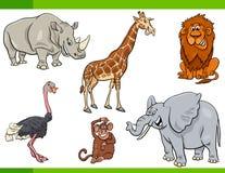 Caratteri animali di safari del fumetto messi Fotografia Stock Libera da Diritti