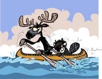 Caratteri divertenti del castoro e delle alci sulla canoa Immagini Stock Libere da Diritti