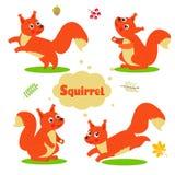 Caratteri divertenti dello scoiattolo del fumetto messi Bambino benvenuto Immagine Stock