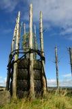 Caratteristica della sommità - rigenerazione di precedente sito a cielo aperto Immagini Stock Libere da Diritti