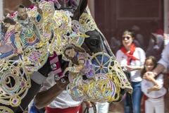 Caravaca de Λα Cruz, Ισπανία, στις 2 Μαΐου 2019: Άλογο που Caballos Del Vino στοκ εικόνα με δικαίωμα ελεύθερης χρήσης