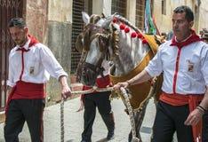 Caravaca de la Cruz, Espa?a, el 2 de mayo de 2019: Caballo que es desfilado en Caballos Del Vino fotos de archivo