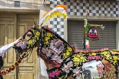 Caravaca De Los angeles Cruz, Hiszpania, Maj 2, 2019: Ko? paraduje przy Caballos Del Vino obraz royalty free