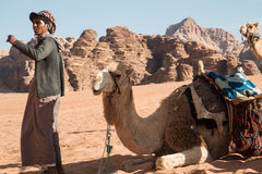 Caravan beduino del cammello immagini stock