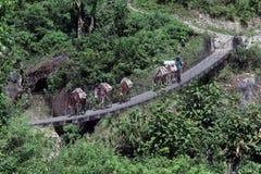 Caravan on the bridge Royalty Free Stock Photo