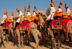 Caravan of camel riders from Rajasthan military deportament Stock Image