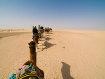 Caravan of camels Stock Photo
