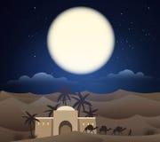 Caravan of camels in sahara Stock Photos