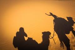 Caravan camels walking shadows projected over orange sand dunes Royalty Free Stock Image