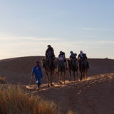 Caravan crossing in Sahara Desert, Morocco Stock Images