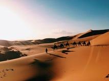Caravan in de woestijn van de Sahara royalty-vrije stock foto