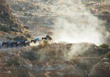 Caravan dei cavalli Fotografia Stock Libera da Diritti