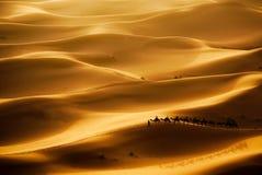 Caravan del cammello Fotografie Stock Libere da Diritti