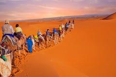 Caravan del cammello che passa attraverso le dune di sabbia in Sahara Desert, Immagine Stock Libera da Diritti