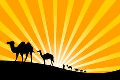 Caravan in the desert Stock Image