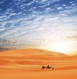Caravan in desert Stock Photography
