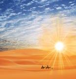 Caravan in desert Royalty Free Stock Photo
