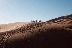 Caravan in desert Stock Photos