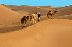 Caravan in desert Royalty Free Stock Photos