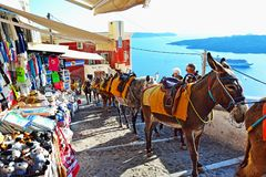 Donkey path tourist attraction Santorini island Greece Royalty Free Stock Images