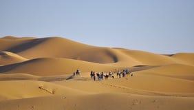 Caravan at dunes royalty free stock images