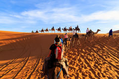 Free Caravan Of Camels With Tourist In The Desert At Sunset Royalty Free Stock Photos - 87287598