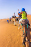 Caravan on Sahara. Camel caravan in the sahara desert royalty free stock photography