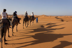 Caravan on Sahara Royalty Free Stock Photography