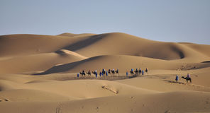 Caravan in Sahara desert april 16,2012 Royalty Free Stock Photos