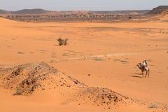 Caravan in the Sahara from Sudan near Meroe Stock Photo