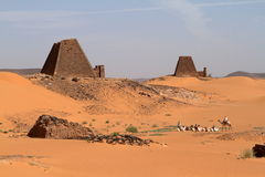 Caravan in the Sahara from Sudan near Meroe Stock Images