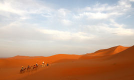 Caravan among the sand dunes Royalty Free Stock Photo