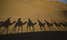 Caravan shadows Royalty Free Stock Photos
