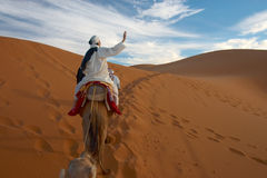 Caravan of tourists in desert. The woman and its guide going across sahara Royalty Free Stock Images