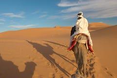 Caravan of tourists in desert Royalty Free Stock Photos