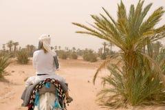 Caravan of tourists in desert Stock Image