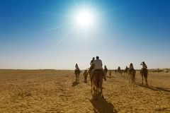 Caravan of tourists passing desert lake on camels Royalty Free Stock Photo