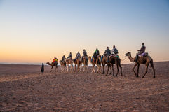 Caravan with tourists in the sahara desert Royalty Free Stock Image