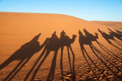 Caravan with tourists in the sahara desert. Morocco, Africa Royalty Free Stock Photo