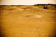 Caravan travelling in the desert Royalty Free Stock Photos